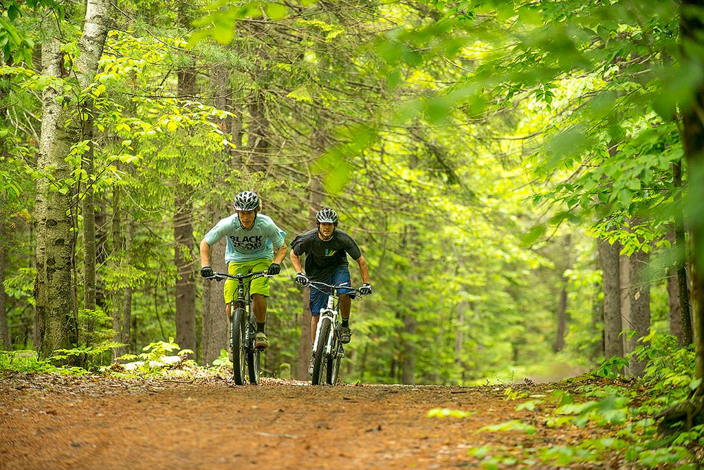 bicyclists on trail photo