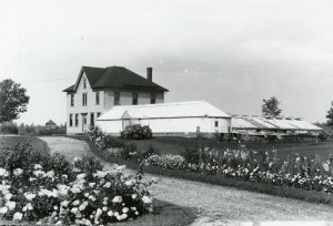 first greenhouses