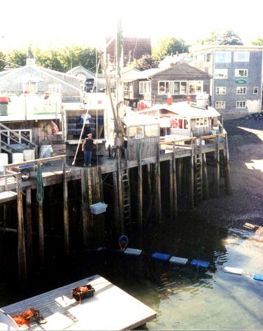 The Real Harbor: A Lobster Wharf at Bar Harbor, Maine – 11/2002