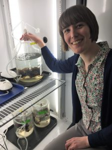 Picture of Charlotte Royer working with seaweed in a cooler.