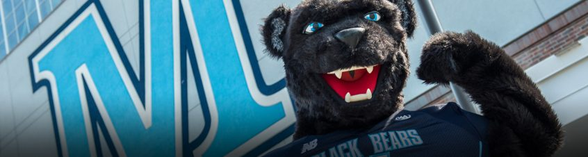 Bananas T. Bear, mascot