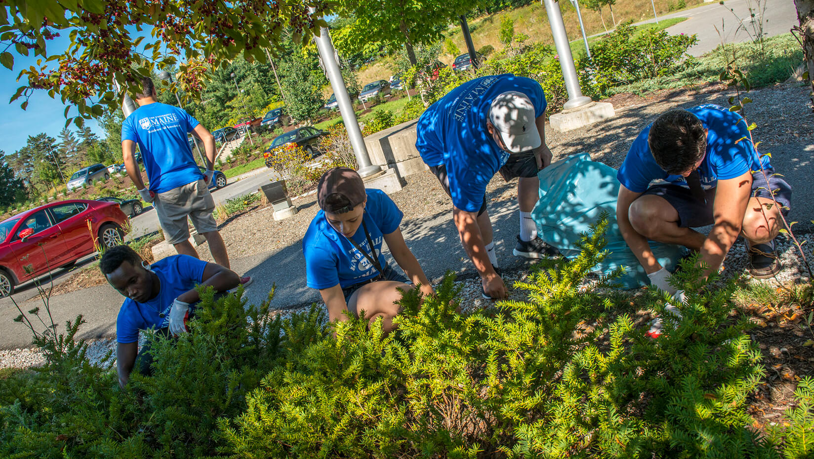 featured image for Welcome Weekend Day of Service allows incoming students to give back to community