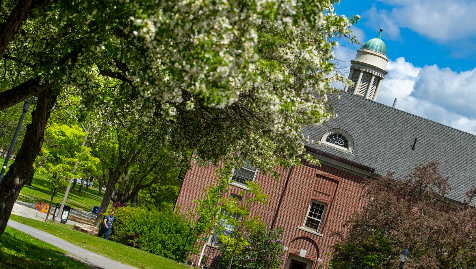 featured image for UMaine in Princeton Review's 'The Best 385 Colleges'