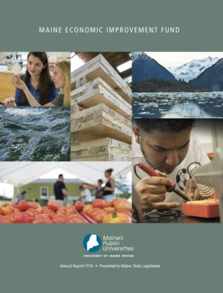 Thumbnail cover image MEIF FY16 report
