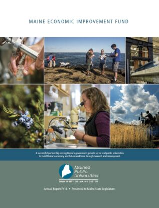 Thumbnail cover image of MEIF Report for FY18