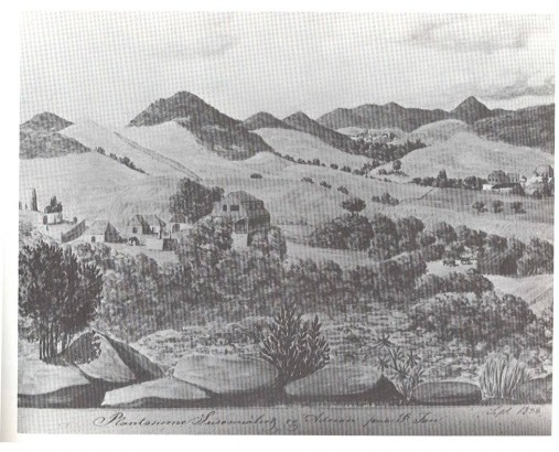 """Susannaberg, Adrian and Catherineberg, 1838.  Watercolor by Frederik von Scholten documents the extent of cultivation on St. John's most fertile area several decates after sugar production peaked.""  St. John Backtime:  Eyewitness Accounts from 1718 to 1956.  Compiled by Ruth Hull Low & Rafael Valls. Eden Hill Press, St. John, 1985, p 40-41."