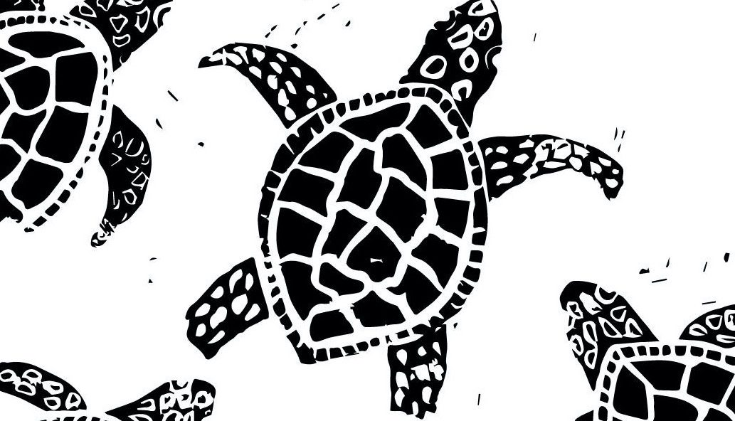 graphic image of turtles