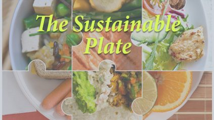The Sustainable Plate