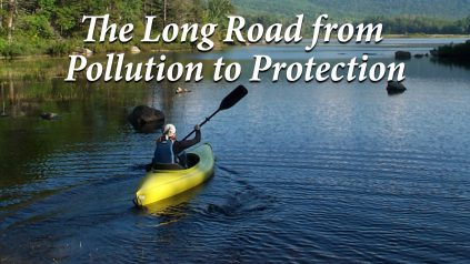 The long road from pollution to protection