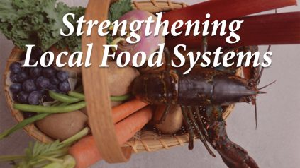 Stengthening local food systems