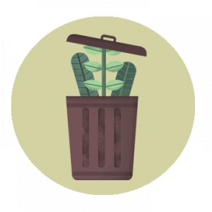 Graphic of plant coming out of trash can