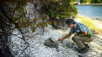 Stephen Claeson kneeling at shell midden along shoreline