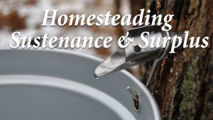 Homesteading: Sustenance and Surplus
