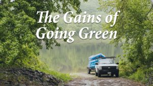 The gains of going green