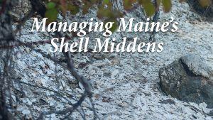 Managing Maine's Shell Middens