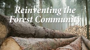 Reinventing the Forest Community