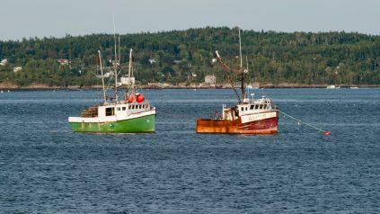 Eastport Boats