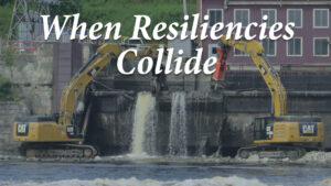 When resiliences collide
