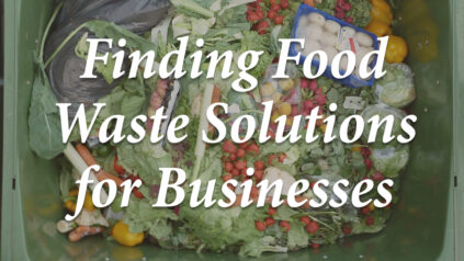 Finding Food Waste Solutions for Businesses