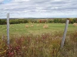 Pastures, Aroostook County, Maine