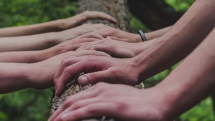 many hands on tree trunk