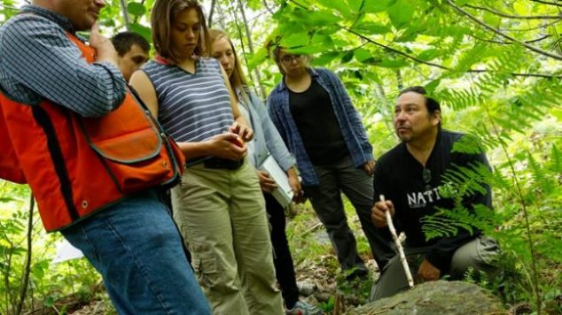students learning in the forest