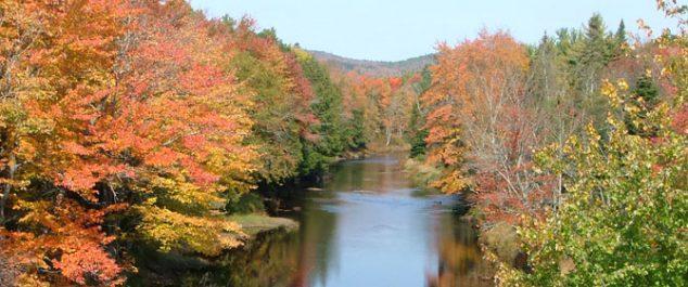 penobscot in fall