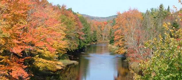 penobscot in fall