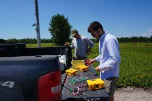 Graduates students deploy soil moisture sensors in the blueberry barrens.