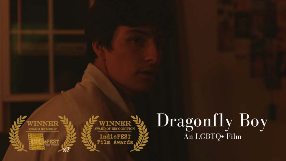 Hotaling Dragonfly Boy Indiefest Awards