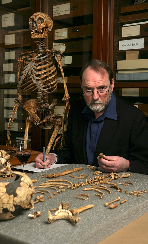 how to become a paleoanthropologist