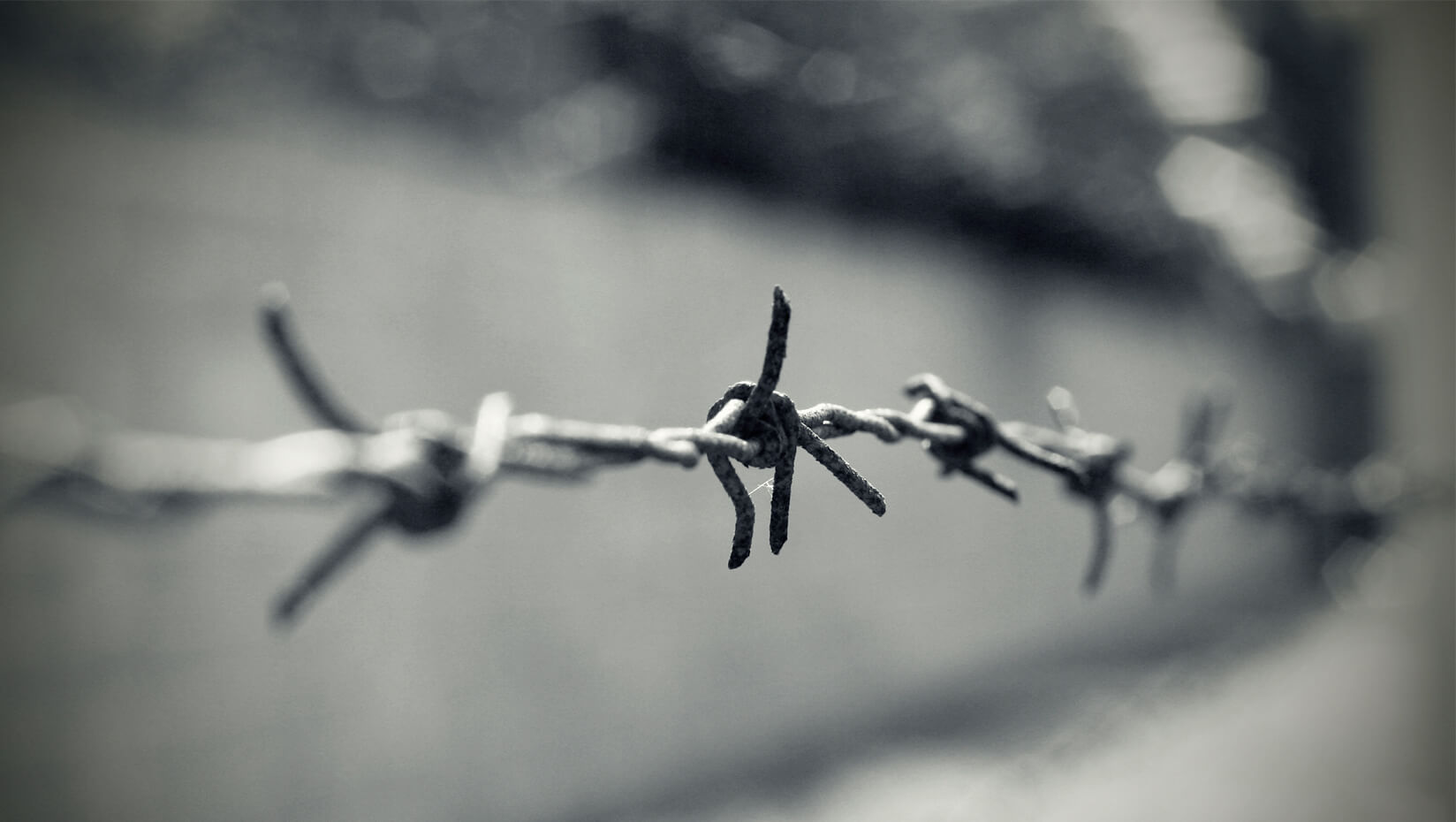 UMaine digital humanities research on the Holocaust receives NEH ...