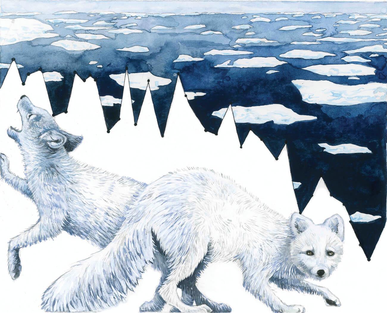 """""""Habitat Degradation: Arctic Melt,"""" Jill Pelto, 2016"""