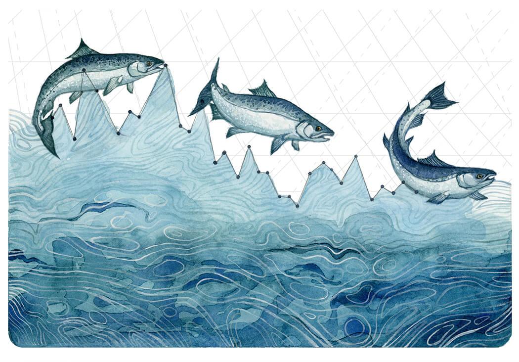 """""""Salmon Population Decline,"""" Jill Pelto, 2016"""