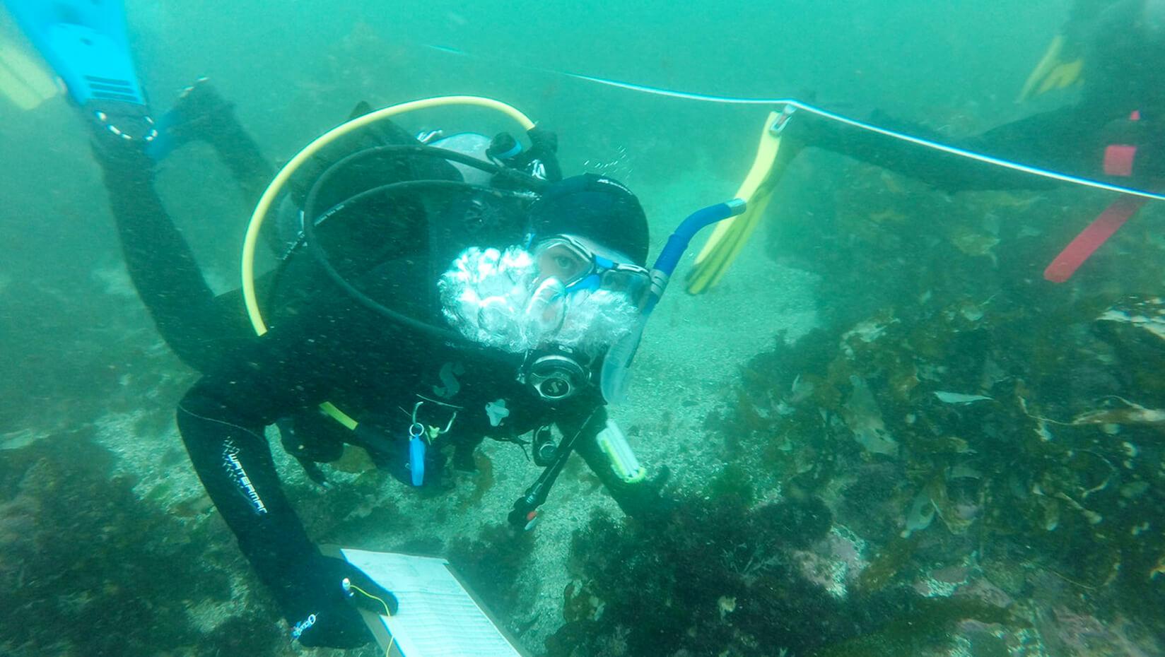 Nine Earn Scientific Diving Certification At Dmc Umaine News