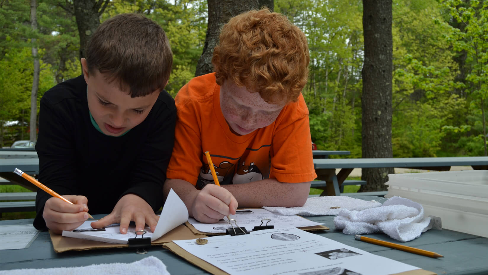 Third-graders measure oysters