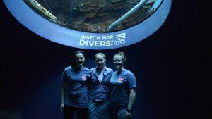 UMaine divers