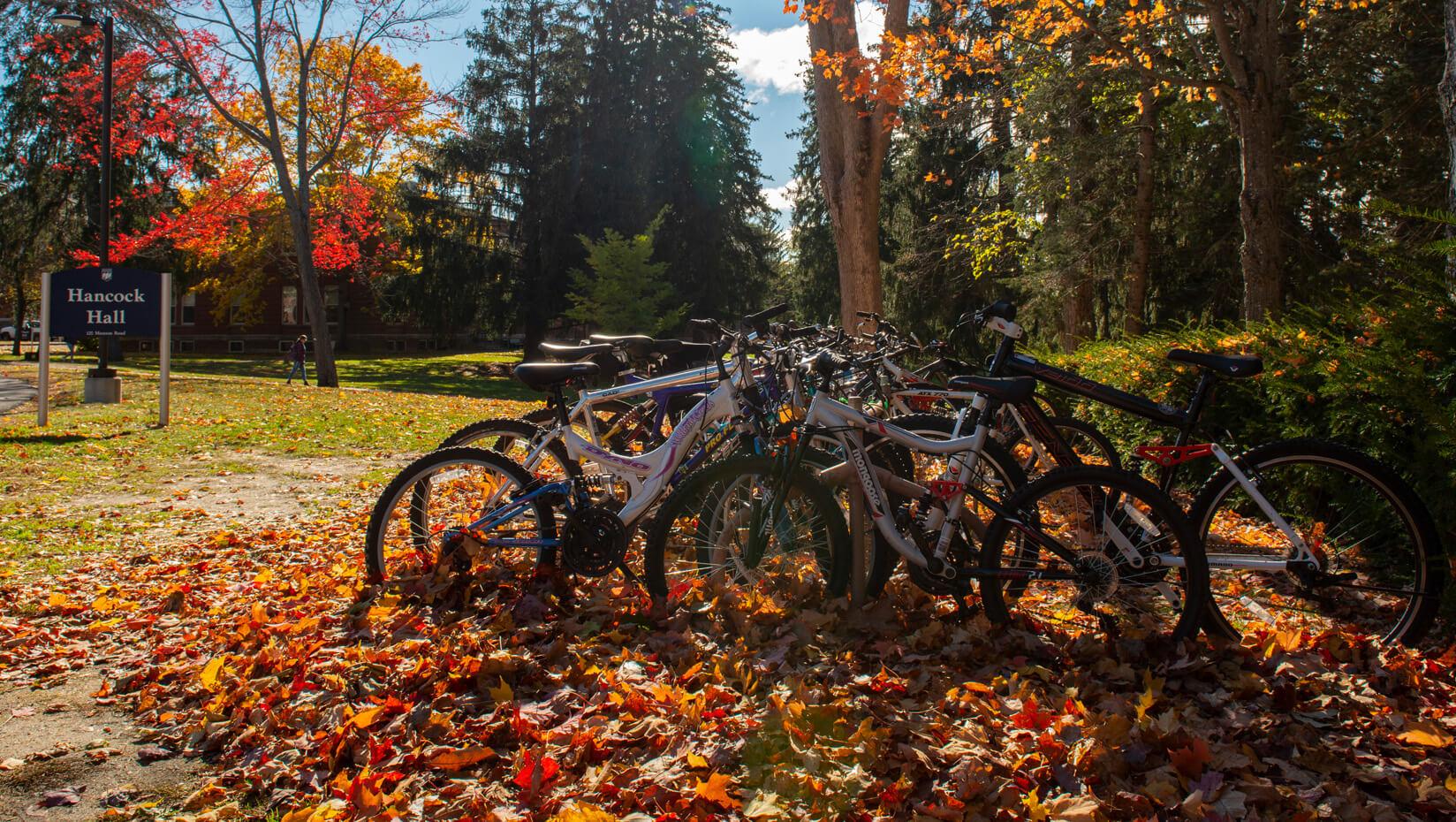 Bike rack on campus