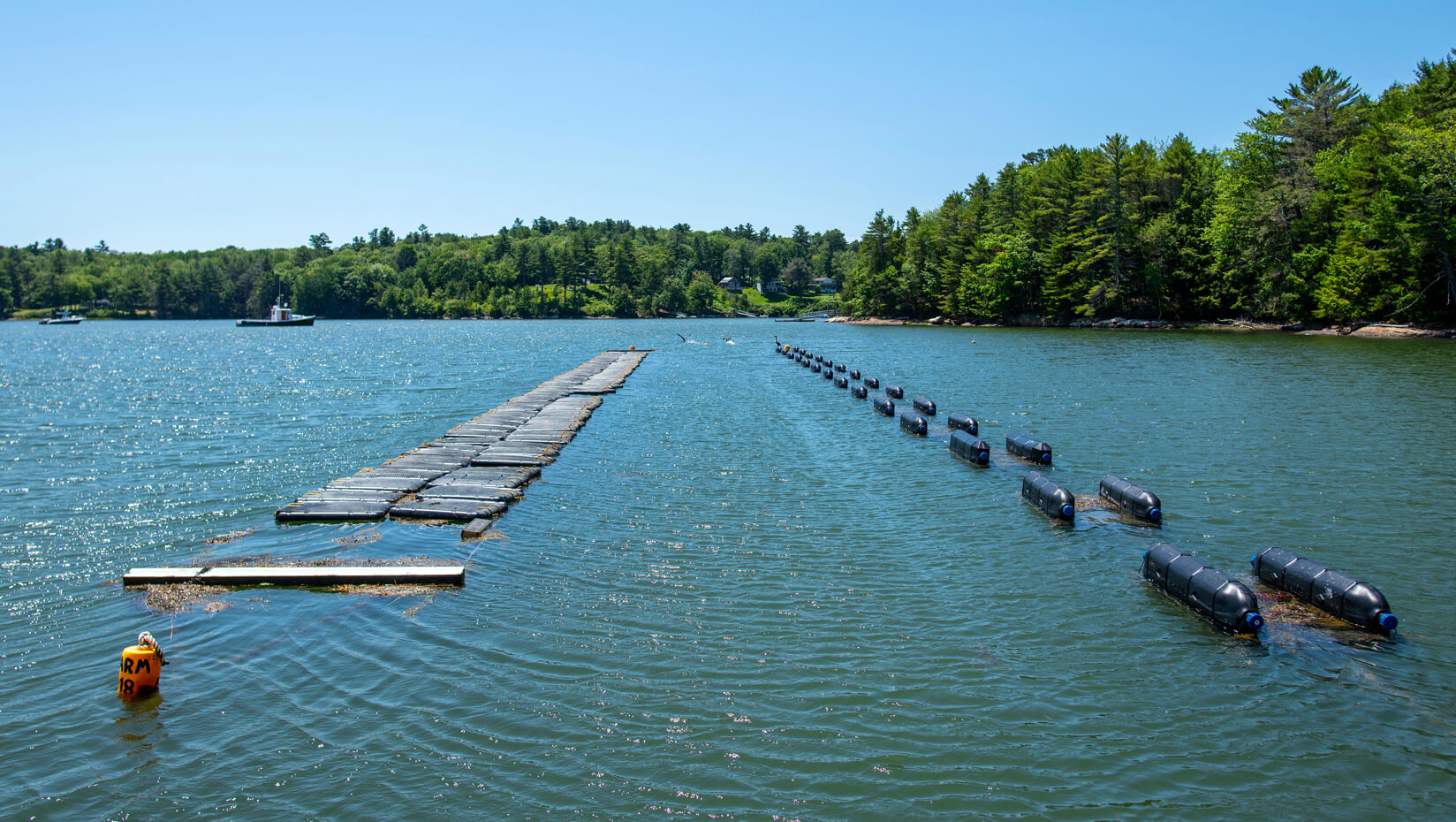 Aquaculture farm