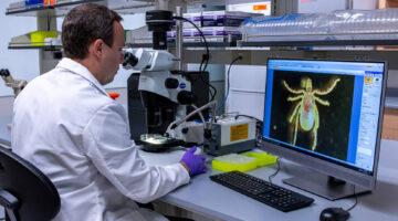 Tick lab research