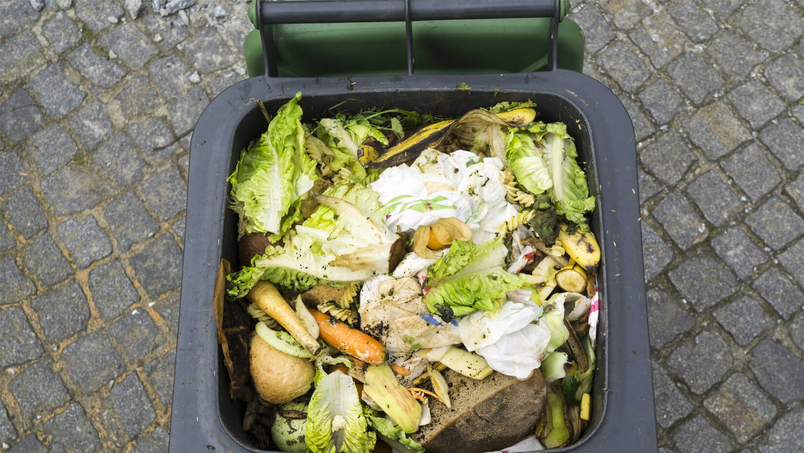 Food waste in a garbage can