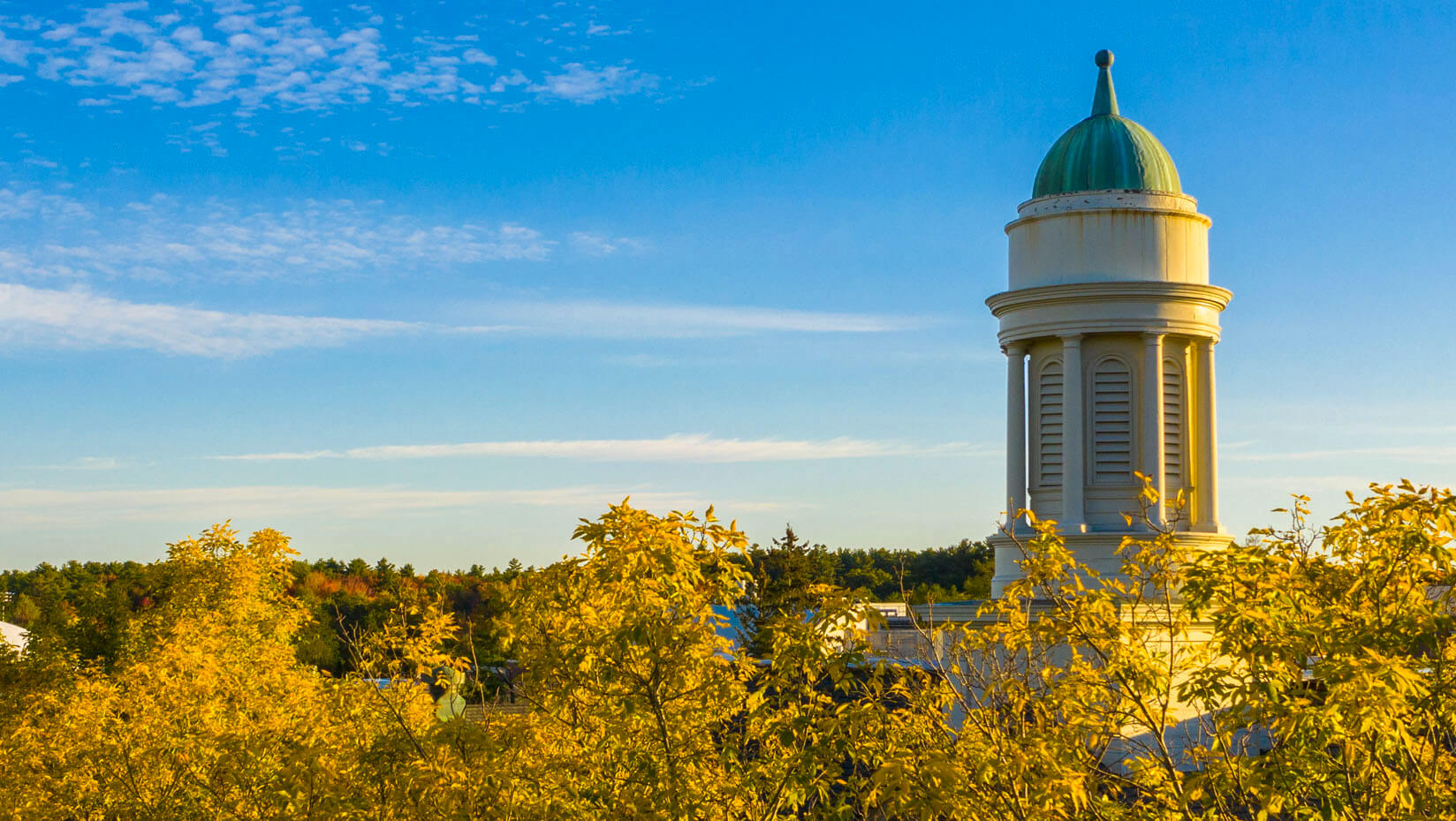 Treetop view of Stevens Hall cupola