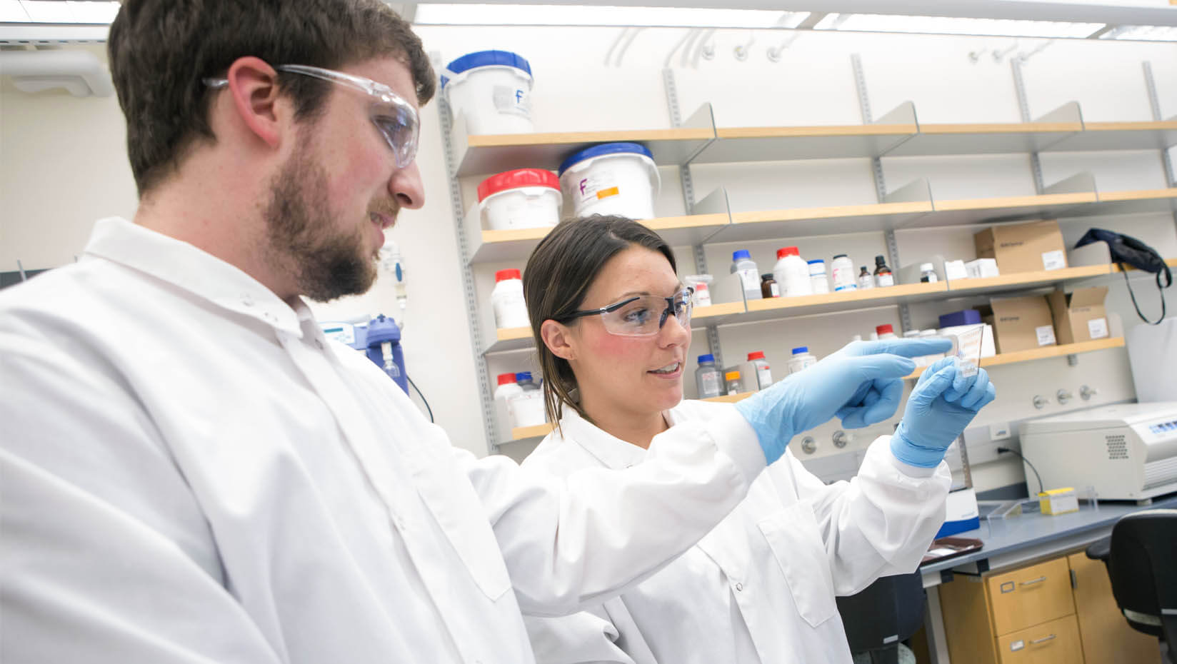 featured image for JAX, UMaine scientists lead discovery of new connection between Alzheimer's dementia and existing gene