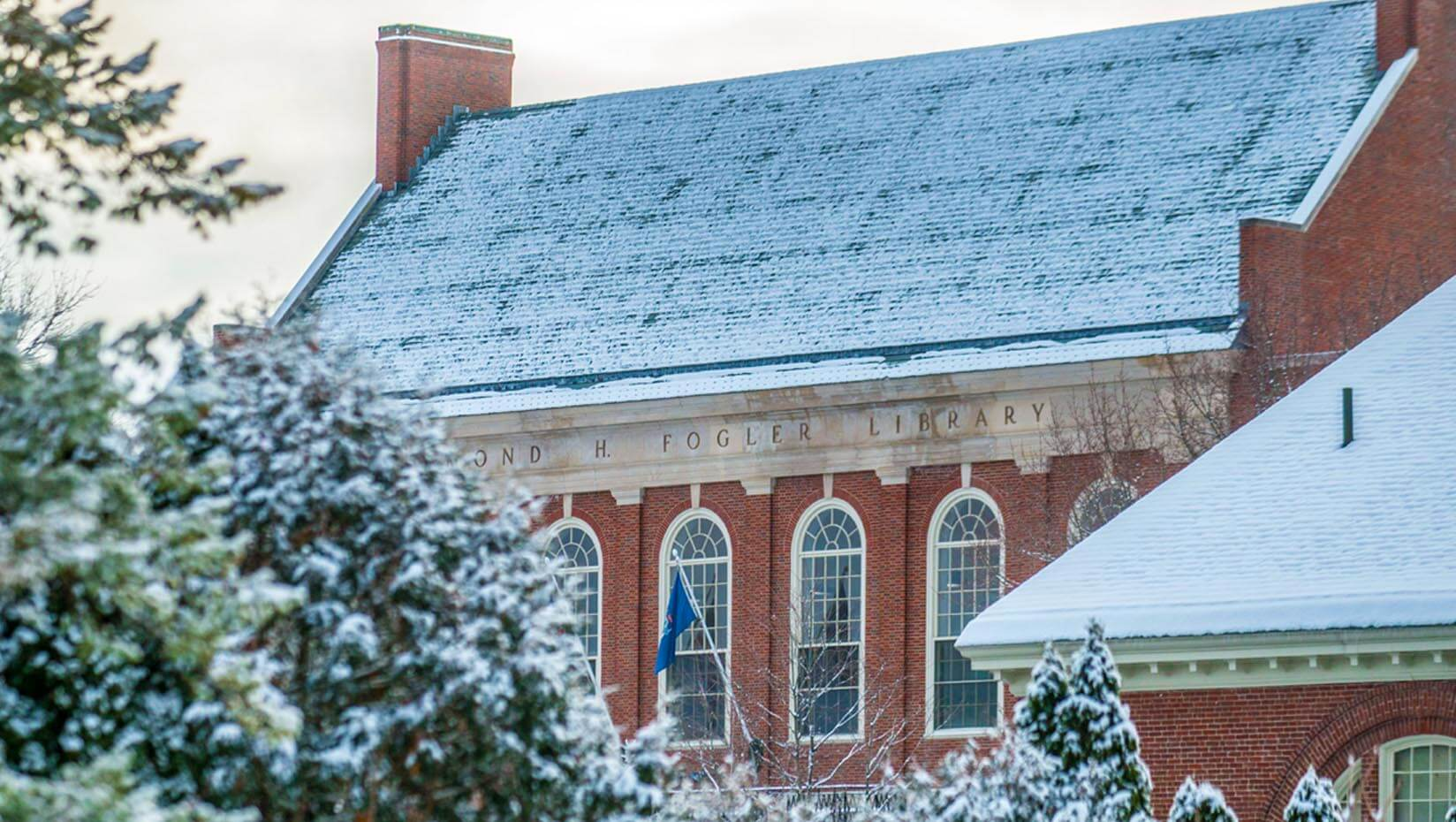 Fogler Library roofline in winter