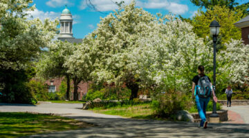 Students walk on campus in spring
