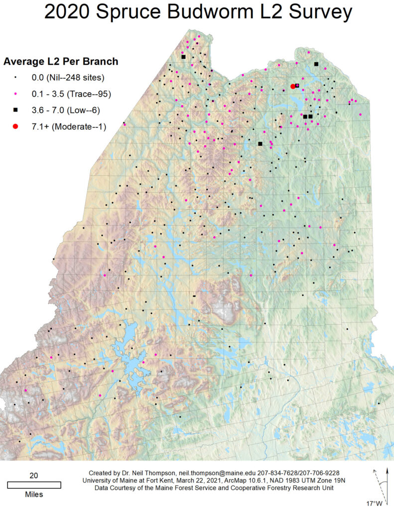 Map of spruce budworm outbreaks in Maine