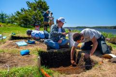 Archaeology fieldwork