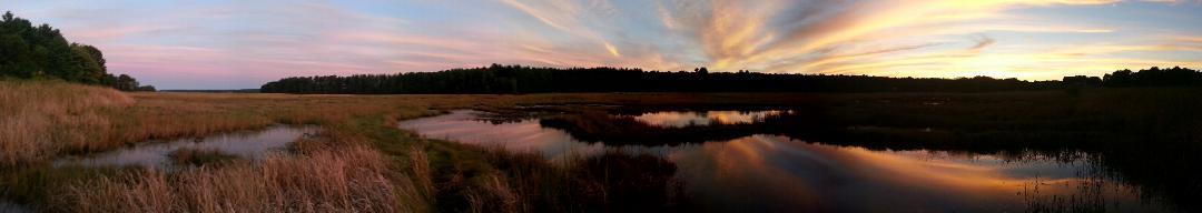 Bri takes great marsh panos