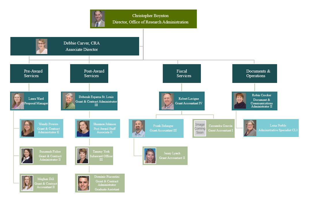 Visual representation of organizational chart