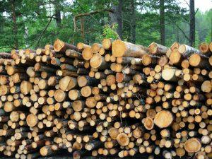woodpile-3-1229344-1280x960